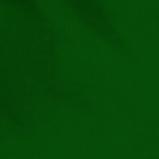 21. ciemna zieleń